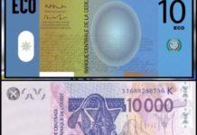 CFA-Eco : la monnaie unique de la Cedeao « différée à une date ultérieure »