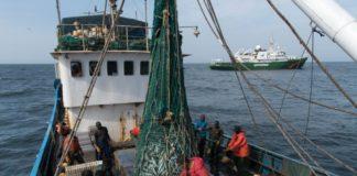 Un pêcheur sénégalais brûlé vif par des Chinois au large de la Gambie