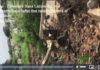 Vidéo - Cimetière Saint Lazare: Le mur s'effondre sous l'effet des rafales de vent et de la pluie
