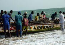 Pêche sous-marine, plongée à risques dans un business florissant
