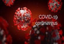 Covid-19, les chiffres du Jour...