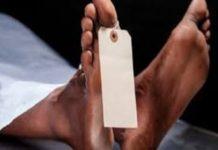 Commune de Dialambere - Arrestation d'un chef de village : Un exploitant forestier battu à mort
