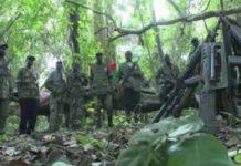 Casamance : Le MFDC réclame un cessez-le-feu