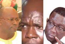 Mairie Parcelles : Khadim Gadiaga prêt à défier Moussa Sy, si Amadou Ba…