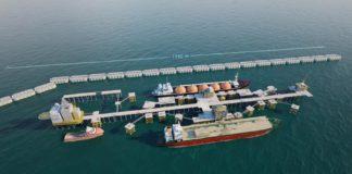 Projet gazier de BP: Le grave danger couru par le Sénégal, les Amp menacées