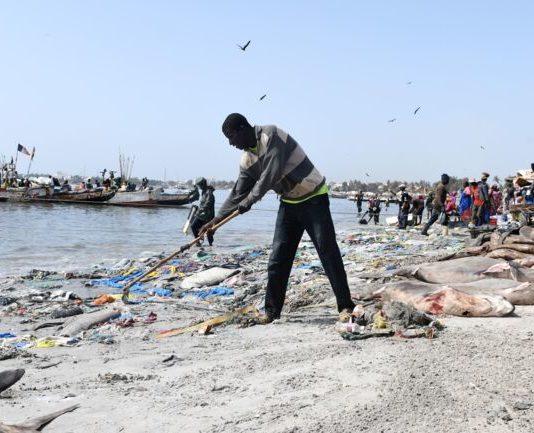 Hann-Gestion des déchets solides sur la plage : Une brigade de la propreté créée